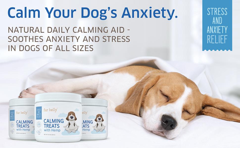 Dog Anxiety Treats