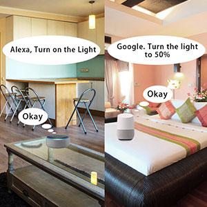 smart bulbs alexa