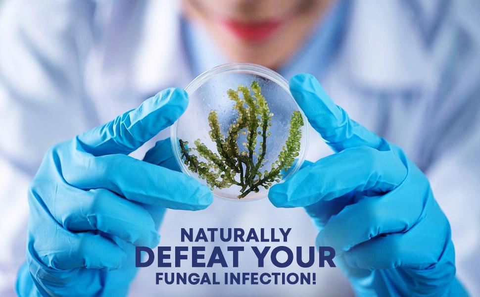 Fungus Clear Pills