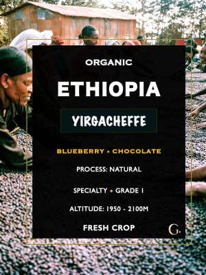 Organic Ethiopian Yirgacheffe Unroasted Green Coffee Beans Roasting Roaster Fair trade Sidamo Guji