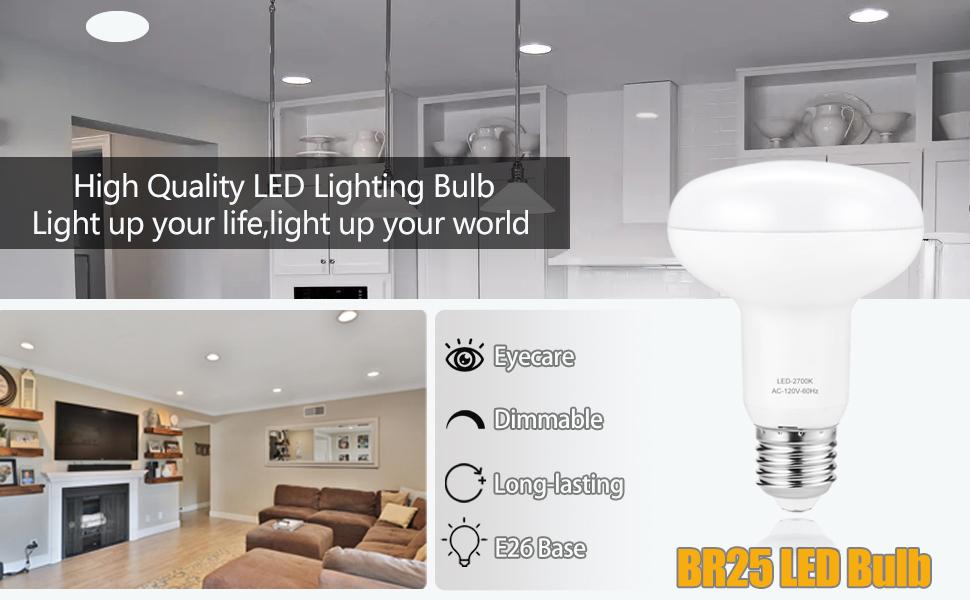 flood light Bulb