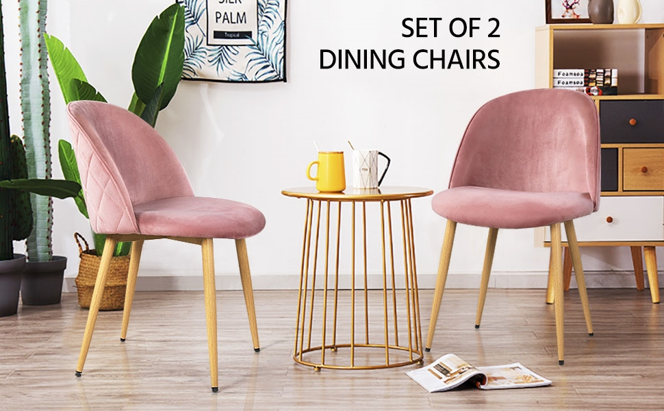 Set of 2 Dining Chairs Kitchen Chairs