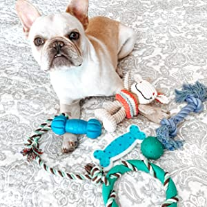 rocket and rex chew toys for small to medium breeds are sold as sets and offer hours of playtime fun