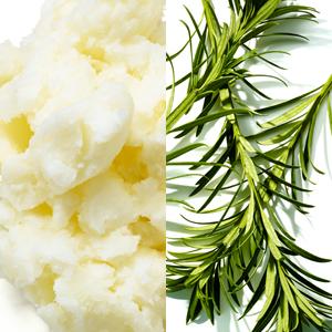aos body bar soap tea tree oil shea butter