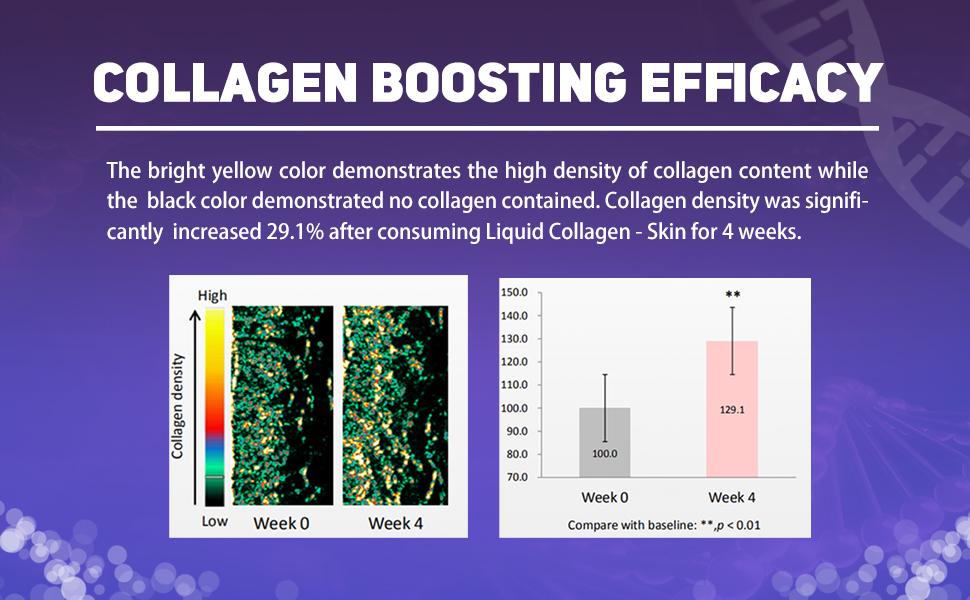 Collagen boosting efficacy