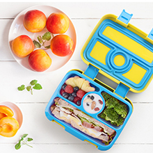 toddler lunch bento box
