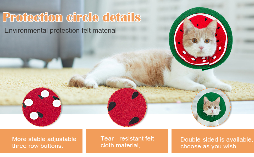 protective cat cone