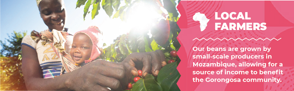 Coffee farmed by locals in Mozambique