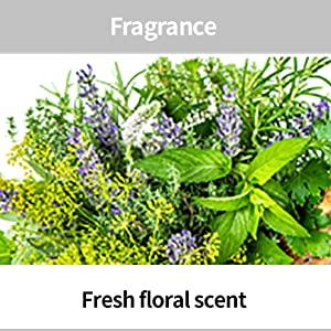 flower picture, fragrance