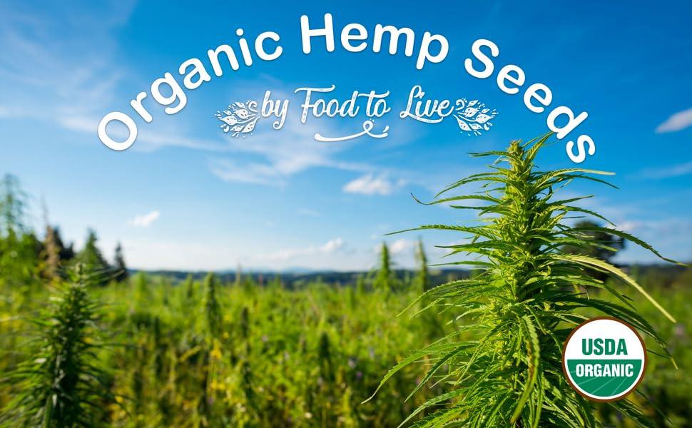 hemp seeds, food to live