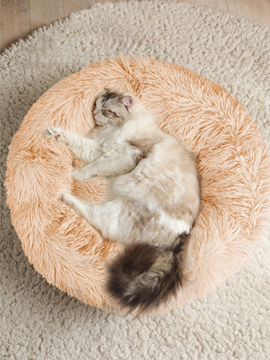 Round Cat & Dog Bed