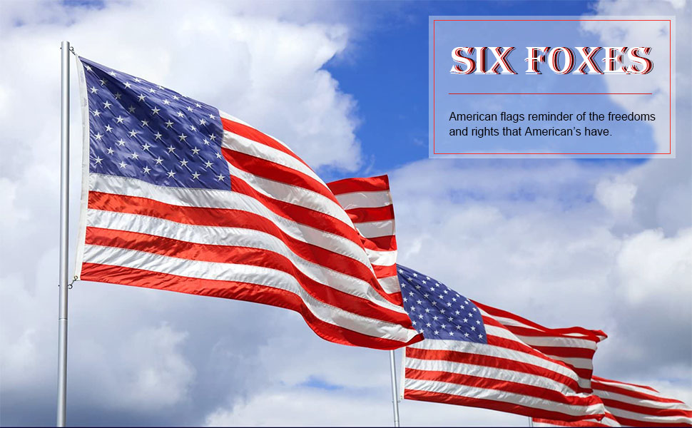 Much Thicker More Durable-1 Pack Vivid Color and UV Fade Resistant US USA Flags Quality Polyester with Brass Grommets SIX FOXES American Flag 3x5 Foot