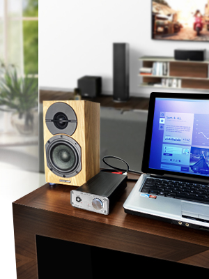 power amplifier for speaker