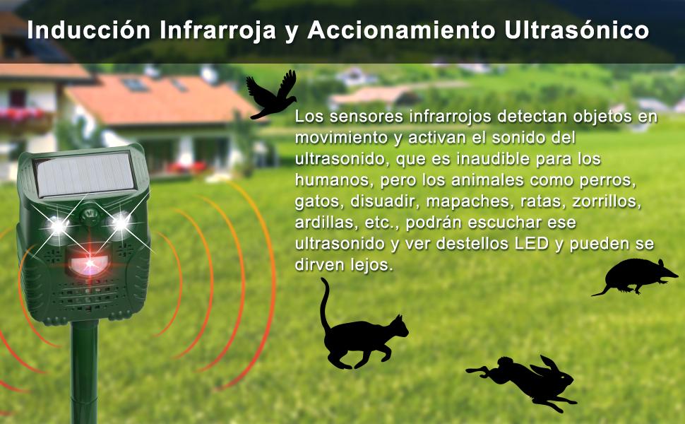 Perros Gatos PewinGo Repelente para Gatos Repelente Ultras/ónico para Animales,Carga Solar,Resistente al Agua,Uso en Exteriores,Tierra de Jardiner/ía y de Animales//Ratones