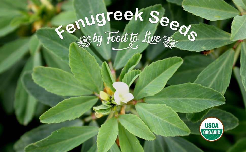 fenugreek seeds, food to live