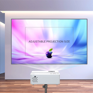 Large Screen Projector
