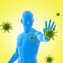 Immunity Support Moringa Tablets Shigru Tablets Drumstick Leaf Moringa oleifera Moringa Capsules