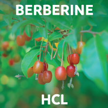Berberine HCL - Barberries
