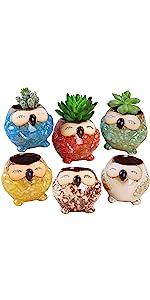 ROSE CREATE 6 Pcs 3 Inches Smile Owl Pots