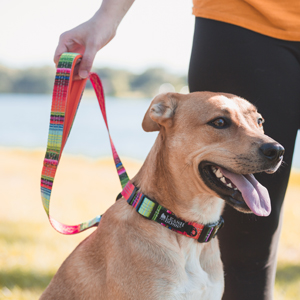 Print pattern leash with reflective threads
