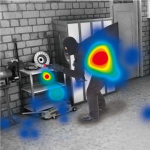 heat mapping ip camera