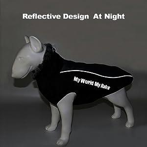 dog jacket reflection