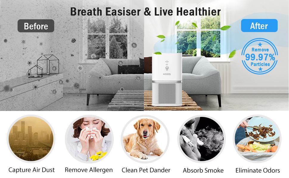 HEAP air purifier for dust