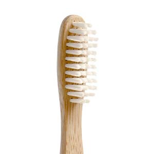 About the Bristles