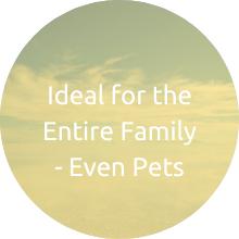 even pets