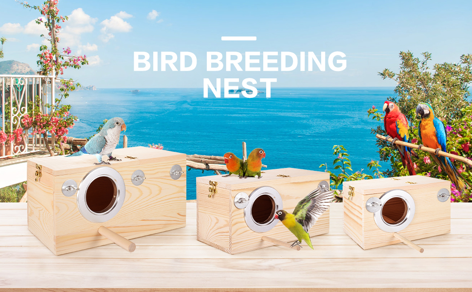 Bird breeding nest