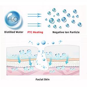 facial steamer for pores