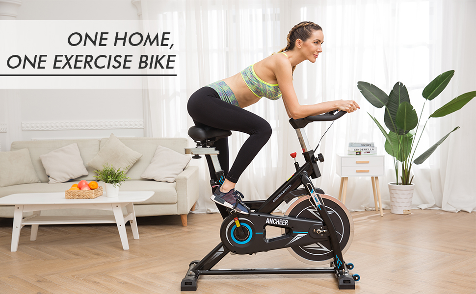 Fit Bicicletta Spinning Bike