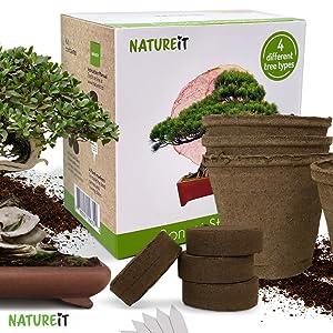 Natureit Bonsai tree seed starter kit