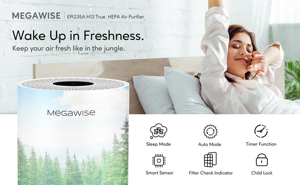 MEGAWISE air purifier, hepa air purifier, hepa air filter, air purifier for large room