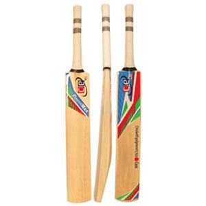 cricket bat, cricket bats, bat cricket