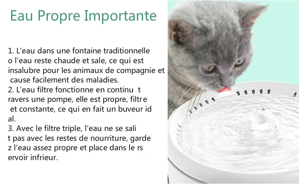 PewinGo Fontaine pour Chat Chien, 2L Silencieuse