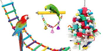 bird toy parrot
