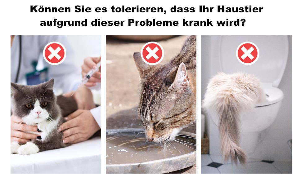 Pecute Haustier Trinkbrunnen Für Katzen Hunde Katzenbrunnen Von Ultra Leise Transparentes Design Wasserfontäne 3 Arten Von Auslaufmodus 2 Wiederverwendbare Filter Einfache Reinigung 3l Haustier