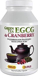 Green Tea EGCG amp; Cranberry