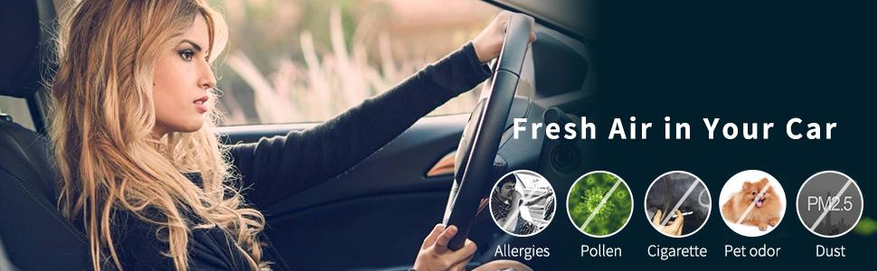 Fresh Air in Your Car