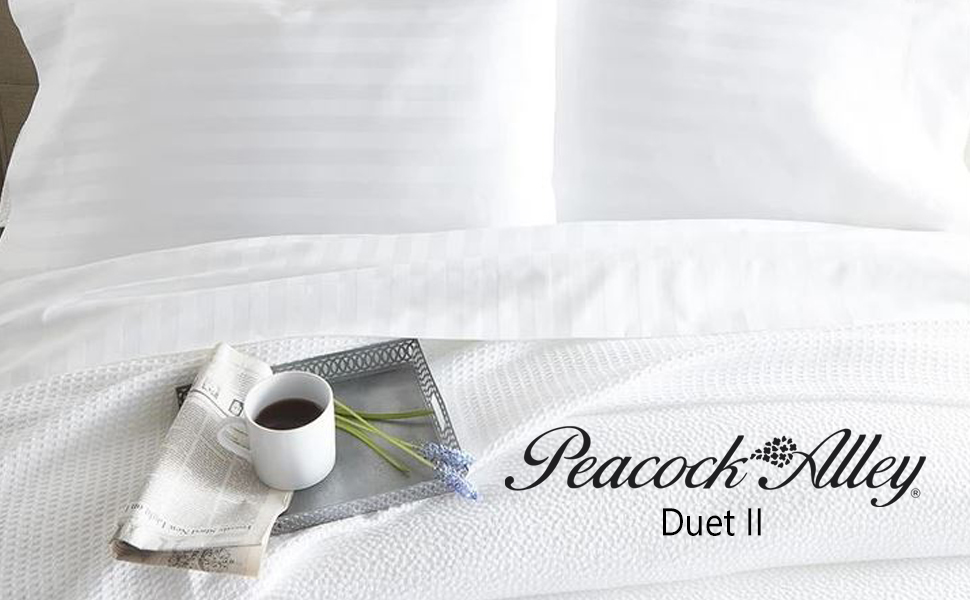 cotton bed egyptian sheet cotton peacock alley duet