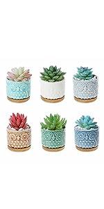Owl Succulent Cactus Planter Pot