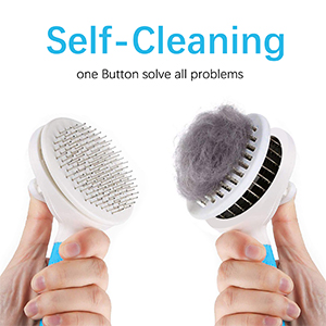 pet brush for cats