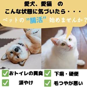 犬、猫、腸活、ペット、ペットサプリ