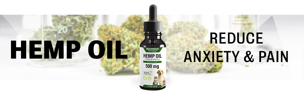 hemp, oil, relax, anxiety, dog, pain, arthritis, digestion, stomach, relief, relieve, downtown