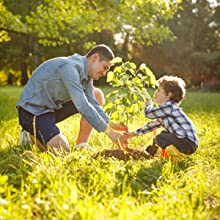 Father and son planting a tree in a lush green meadow