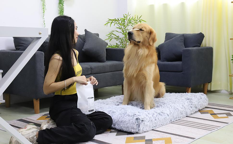 Soft Foam Dog Bed Waterproof Orthopedic Dog Bed  Memory Foam Dog Crate Mattress Orthopedic