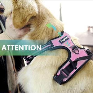 petit animal confortable et antid/érapant FRISTONE Si/ège auto rehausseur pour chien avec laisse de s/écurit/é /à clip et poche de rangement pour chiot