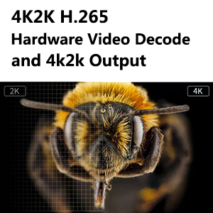 TV BOX H.265