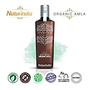 shampoo ORGANIC AMLA DHT Blocker Indian Vitalize Formula for Shiny Strong Hair Vitamin C B-Complex